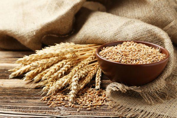 小麦アレルギーの原因